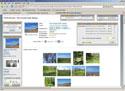 Online Store Engine